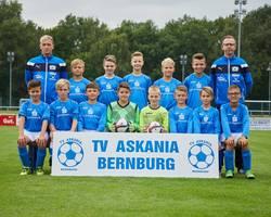 Mannschaftsfoto - D1-Junioren - Saison 2017/18